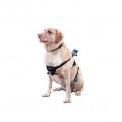 Кріплення для GoPro на собаку