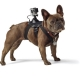 Dog harness for dogs GoPro Fetch Dog Harness, view of the dog in profile
