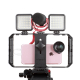 Video rig for smartphone with accessories mounts