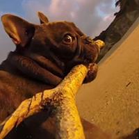 Крепление для GoPro клешня